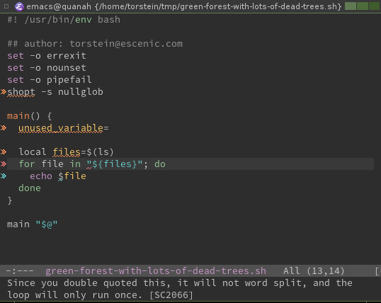 flycheck in emacs